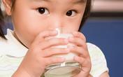 Lại lo với sữa nhiễm độc