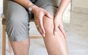 Điều trị thoái hóa khớp an toàn bằng thảo dược