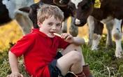 Bí quyết của mẹ thông thái chọn sữa tươi cho con