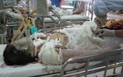 Vụ thiếu nữ bị thiêu sống ở Đà Nẵng: Đám cưới hụt và nỗi đau dang dở