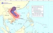Sáng sớm nay, bão Haiyan cách Quảng Ngãi - Quảng Trị 250km