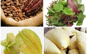 Axit độc trong rau quả gấp trăm lần bún tươi, bánh phở