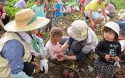 Bí kíp dạy con 'mát tay' của mẹ Nhật