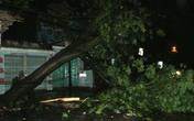 Bão càn quét từ Hải Phòng tới Hà Tĩnh, miền Bắc mưa lớn