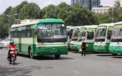 TP HCM: Trang bị wifi cho xe buýt