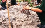 Sẽ giám định ADN 9 bộ hài cốt được nhà ngoại cảm tìm thấy ở Quảng Trị