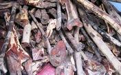 Liên tục bắt gỗ trắc trên QL1A đoạn qua Quảng Bình
