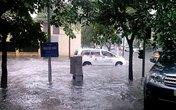 Hà Nội đổ cây, thành Vinh ngập nước sau mưa lớn