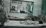 Vụ thiêu sống cả nhà: Cháu bé thứ 2 đã tử vong