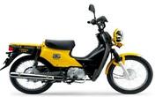 Xe Honda Cub tái xuất thị trường