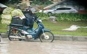 Gần 100 nghìn một lần đi chợ hộ ngày mưa bão