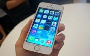Giá iPhone 5S vàng giảm mạnh tại Việt Nam