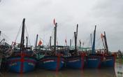 Cứu tàu cá Trung Quốc bị bão đánh trên biển