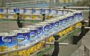 Sữa bột của Vinamilk không có chất nhiễm độc