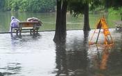 Cận cảnh Hồ Gươm nước tràn bờ