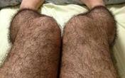 """Tất lông chân chống """"yêu râu xanh"""""""