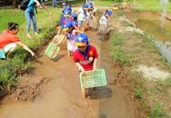 Hôm nay TP.HCM & Hà Nội có thêm hai sân chơi hấp dẫn trẻ em
