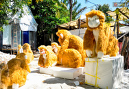 """Cận cảnh bầy khỉ khổng lồ sắp """"đổ bộ"""" đường hoa Nguyễn Huệ"""