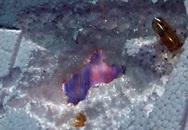 Yêu cầu xác minh dầu cá Omega - 3 Trung Quốc làm thủng cả mảng xốp