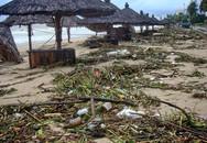 Bãi biển đẹp nhất thế giới xác xơ sau lũ