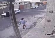 Sợ mất việc, mẹ trẻ nhẫn tâm bỏ con mới sinh vào thùng rác công cộng