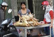 """Người Hà Nội hiến kế để """"nói không"""" với thịt chó"""