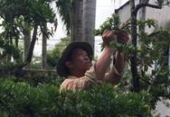 Cụ ông rời xứ dừa lên phố, làm vườn kiểng độc lạ thu bạc tỷ