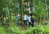 Sự thật về cái chết của một Phó chủ tịch UBND xã ở Bắc Giang