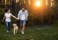 Second home sinh thái – ngôi nhà của sức khỏe