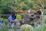 Khu vườn của người phụ nữ ở ẩn từ tuổi 40