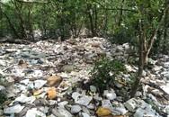 Hải Phòng: Rác thải bủa vây rừng phòng hộ Tiên Lãng