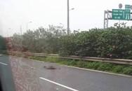 Nam thanh niên nhặt rác trên Đại lộ Thăng Long bị ô tô 16 chỗ tông chết