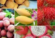 """6 loại trái cây tươi ở Việt Nam đã được xuất khẩu thành công với giá bán """"khó tin"""""""