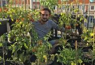 Anh chàng điển trai khiến hàng nghìn cô gái ngưỡng mộ khi trồng cả một sân thượng rau quả xanh tươi
