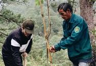 Ca sĩ Hà Anh Tuấn trồng hai cánh rừng ở Lâm Đồng, Đà Nẵng