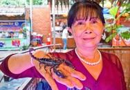 """Người phụ nữ miền Tây thuần hoá loài bọ cạp đáng sợ, bắt chúng """"đẻ ra tiền"""""""