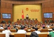 Chiều nay trình Quốc hội bãi nhiệm ĐBQH đối với ông Phạm Phú Quốc