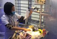 Telehealth: Hồi hộp chờ đợi bé sơ sinh thứ 1.000 chào đời nhờ thụ tinh trong ống nghiệm ở Thái Nguyên