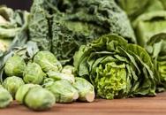 5 siêu thực phẩm cho lá phổi khỏe