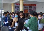 Ninh Bình: Gần 8.000 cơ hội việc làm cho người lao động