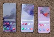 Bộ ba Galaxy S20 khác nhau thế nào
