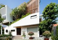 Ngôi nhà thiết kế không theo quy luật, ấn tượng nhất là hệ thống cây xanh