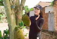 Trà Ngọc Hằng khoe trang trại 9.600 m2 ở Lâm Đồng