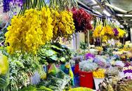 Chợ hoa lớn nhất TP.HCM 'tê liệt' trước ngày 8/3, tiểu thương không dám nhập hàng