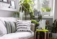 20 ý tưởng đơn giản trang trí những góc trống trong nhà