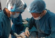 Quảng Trị: Vượt biển khơi phẫu thuật cho bệnh nhân viêm ruột thừa cấp
