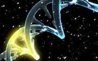 Kích hoạt gen giúp kéo dài tuổi thọ