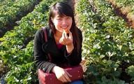 Nữ giám đốc 8X lập nghiệp từ những nông trang rau quả ế
