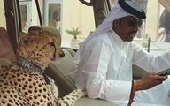 Những điều điên rồ thể hiện sự giàu có của Dubai