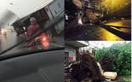 """Cận cảnh Hà Nội thành """"bãi chiến trường"""" sau mưa giông"""